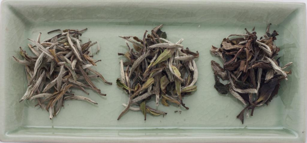 Baihao Yinzhen, Bi Mudan und Gong Mei im Vergleich