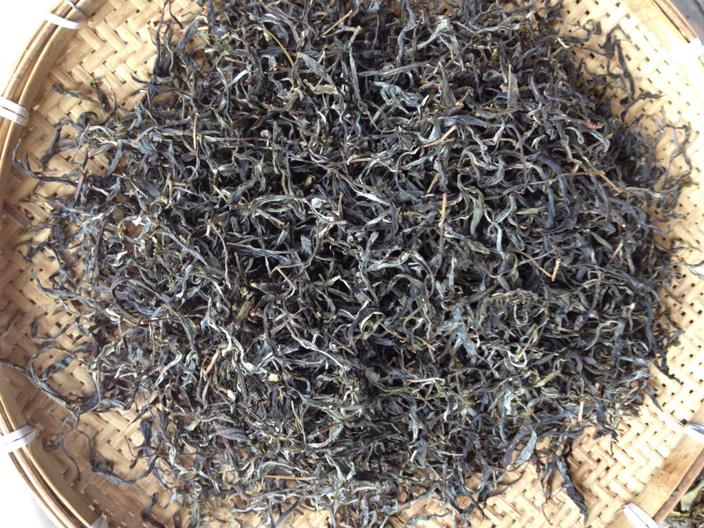 Teeblätter von alten Teebäumen