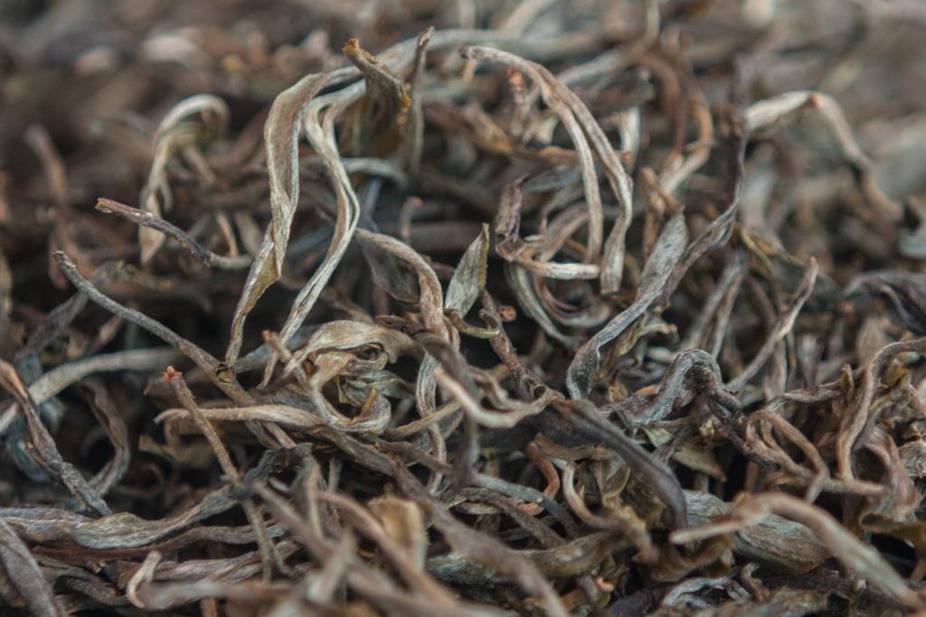 Gushu Teeblätter