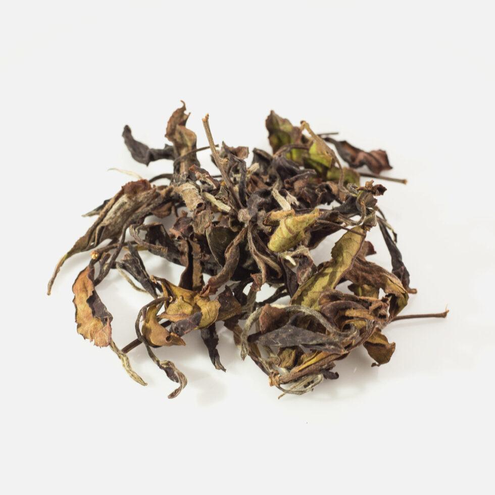 Benifuuki white tea